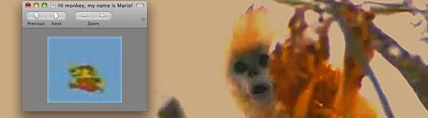 Wall Art - Painting - hi monkey my name is Mario    by Raul Gubert