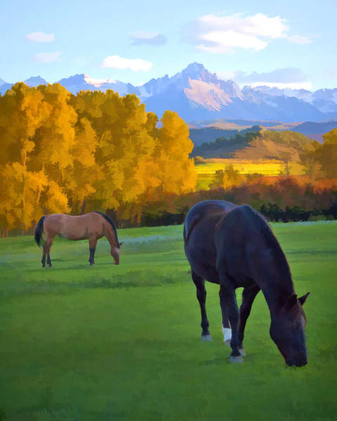 Digital Art - High Country Horses by Rick Wicker