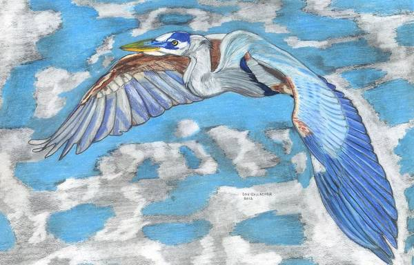 Great Blue Heron Drawing - High Flying by Don  Gallacher