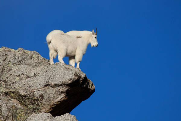 Photograph - High On A Mountain Top by Jim Garrison