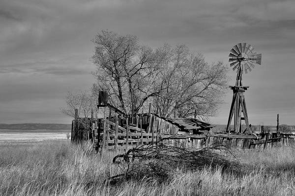 Photograph - High Plains Wind by Ron Cline