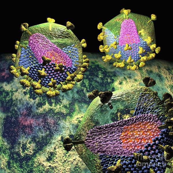 Digital Art - Hiv Three Sectioned Virions On Black by Russell Kightley