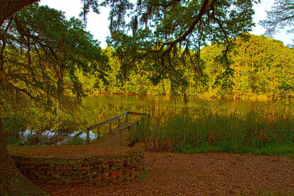 Photograph - Hobcaw Barony Pond by Bill Barber