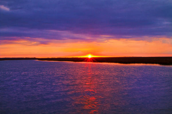 Photograph - Hobcaw Barony Sunrise by Bill Barber