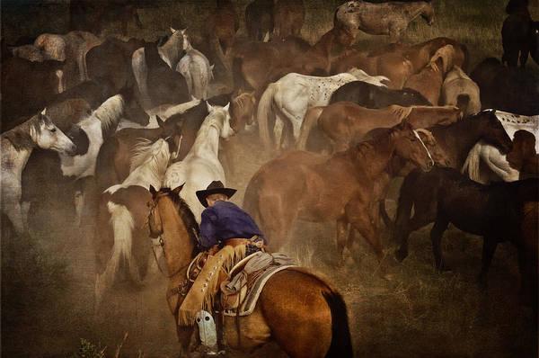 Wall Art - Photograph - Holding Herd by Pamela Steege
