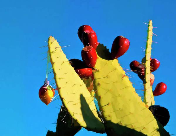 Photograph - holiday Cactus 1 by Lou  Novick