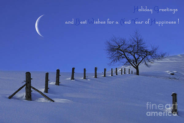 Weihnachten Photograph - Holiday Greetings by Sabine Jacobs
