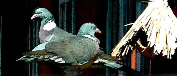 Mixed Media - Holy Pigeon Couple Mates For Ever Enjoy The Garden Peace by Colette V Hera  Guggenheim