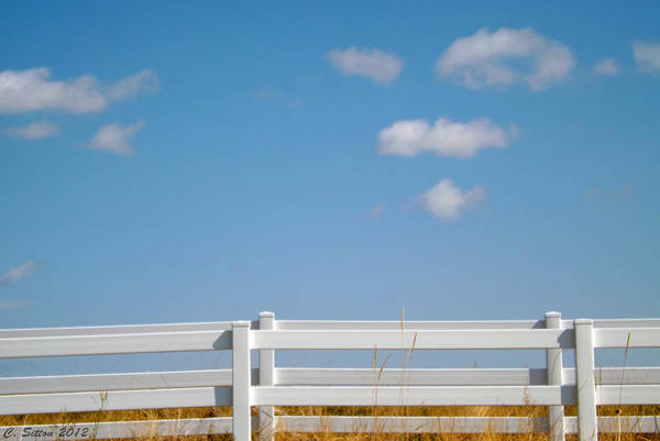 Photograph - Home On The Range by C Sitton