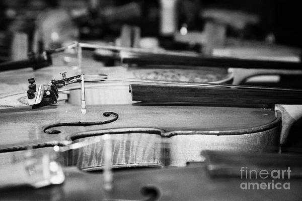 Wall Art - Photograph - Homemade Handmade Violins Made Of Different Materials And Shape by Joe Fox