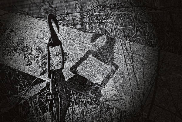 Wall Art - Photograph - Hook And Shadow by Susan Capuano