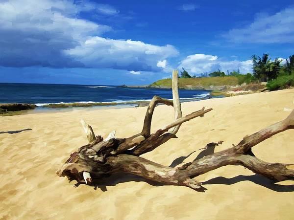 Hawaii Mixed Media - Hookipa Bay by Snake Jagger