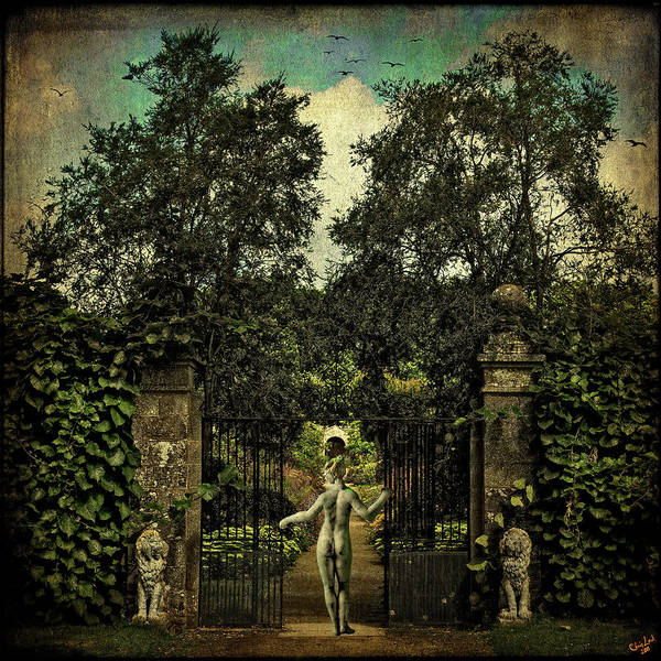 Photograph - Hope Arrives At The Garden Gate by Chris Lord