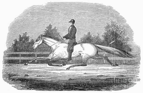 1851 Photograph - Horse Racing, 1851 by Granger