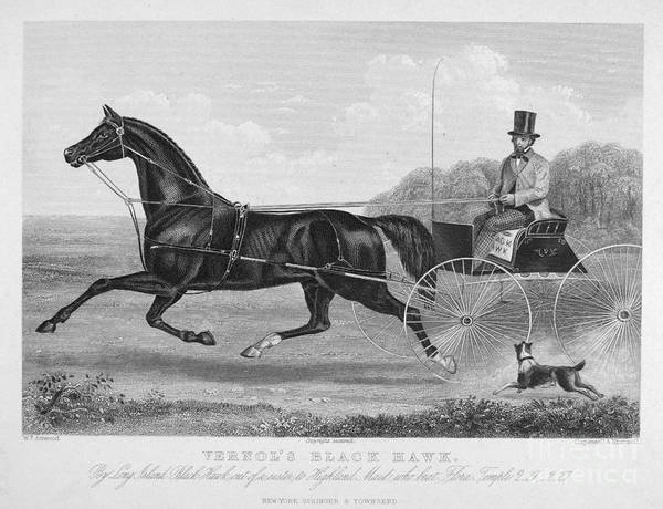 Photograph - Horse Racing, C1850 by Granger