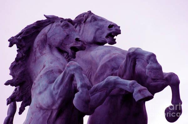 Horse Sculptures Art Print