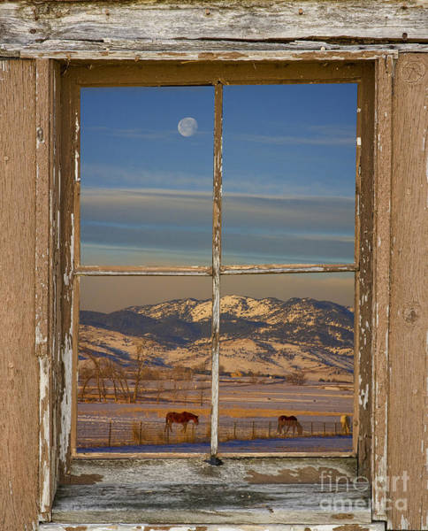 Photograph - Horses And Moon Rustic Farm Window View by James BO Insogna