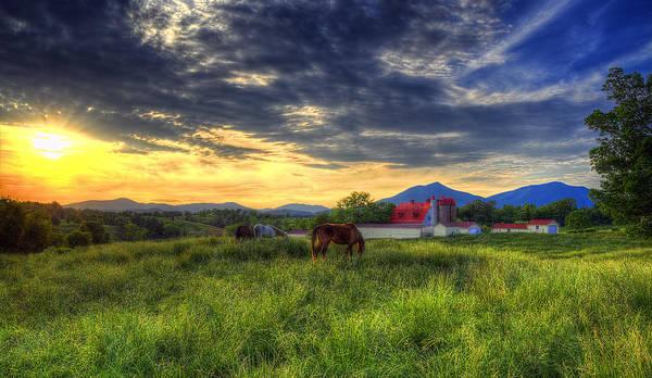 Wall Art - Photograph - Horses Grazing At Sunset by Steve Hurt