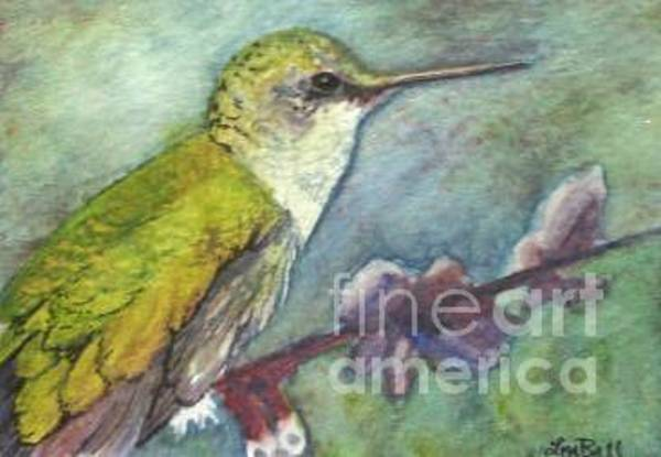 Wall Art - Painting - Hummingbird by Lisa Bell