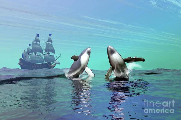 Schooner Digital Art - Humpback Whales Breach The Ocean by Corey Ford