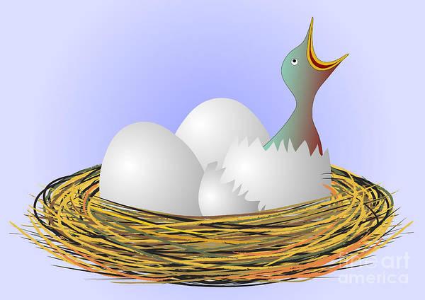 Wall Art - Drawing - Hungry Bird In Nest by Michal Boubin