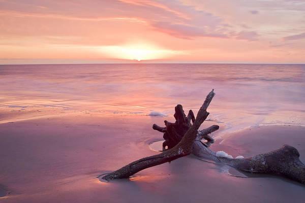 Hunting Island Wall Art - Photograph - Hunting Island South Carolina by Bill Swindaman