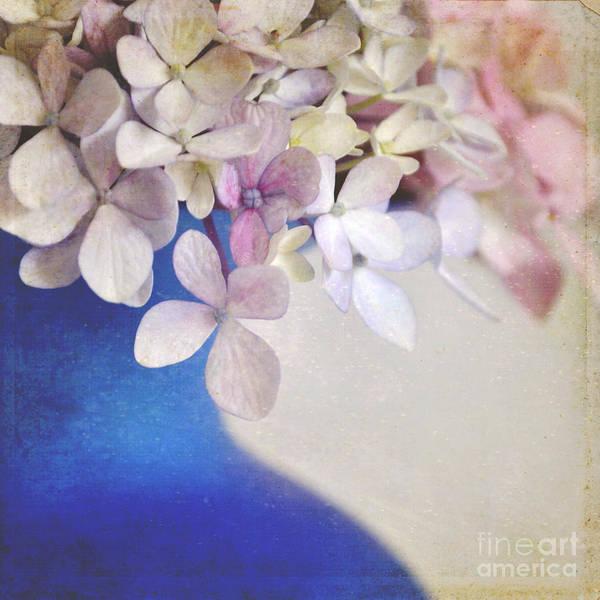 Wall Art - Photograph - Hydrangeas In Deep Blue Vase by Lyn Randle