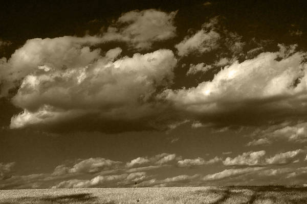 Photograph - I Really Don't Know Clouds At All by Yuri Lev