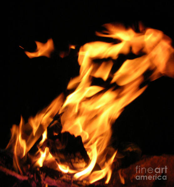 Photograph - I See Fire by Anthony Wilkening