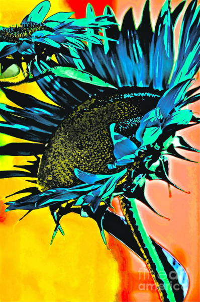 Sunflower Seeds Photograph - I Will Be Bigger Than You by Gwyn Newcombe