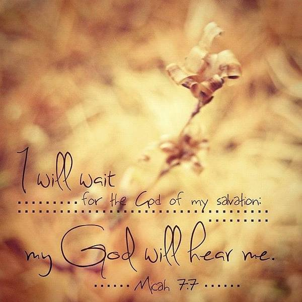 Peace Wall Art - Photograph - ...i Will Wait For The God Of My by Traci Beeson