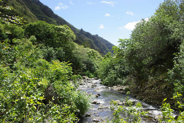 Photograph - Iao Valley River by Marilyn Wilson