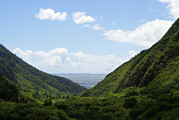 Photograph - Iao Valley Vista by Marilyn Wilson