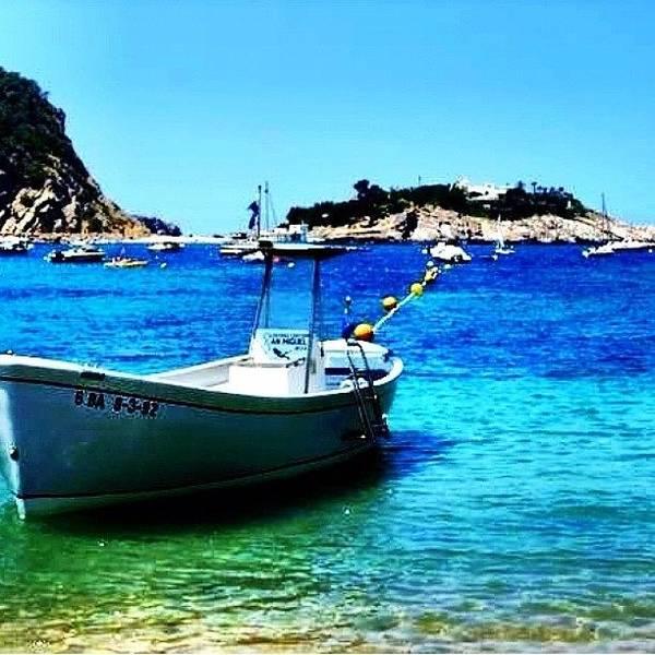 Wall Art - Photograph - Ibiza Shore #ibiza #spain #shore #beach by David Sabat