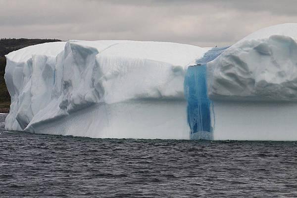 Wall Art - Photograph - Iceberg by Eunice Gibb