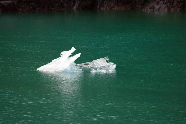 Photograph - Iceberg by Marilyn Wilson