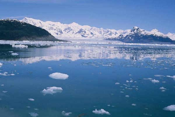 Gulf Of Alaska Photograph - Icebergs Off Columbia Glacier by Rich Reid