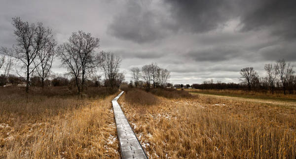 Wall Art - Photograph - Icy Boardwalk by Cale Best