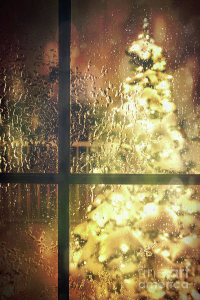 Wall Art - Photograph - Icy Window With Holiday Tree Full Of Lights by Sandra Cunningham