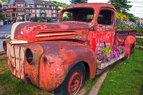 Photograph - If You Cant Drive It Anymore   Turn It Into A Planter by Robin Webster