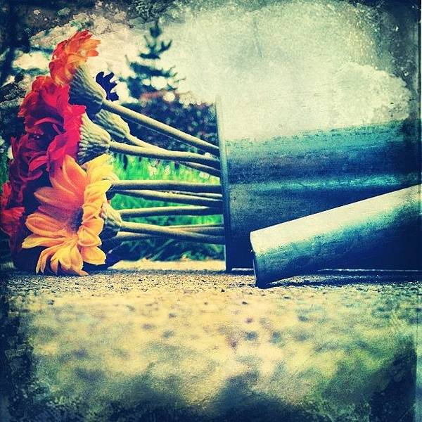 Iphone Wall Art - Photograph - I'm So Deep And Meaningful. #iphone by Johnathan Dahl