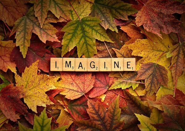 Photograph - Imagine-autumn by  Onyonet  Photo Studios