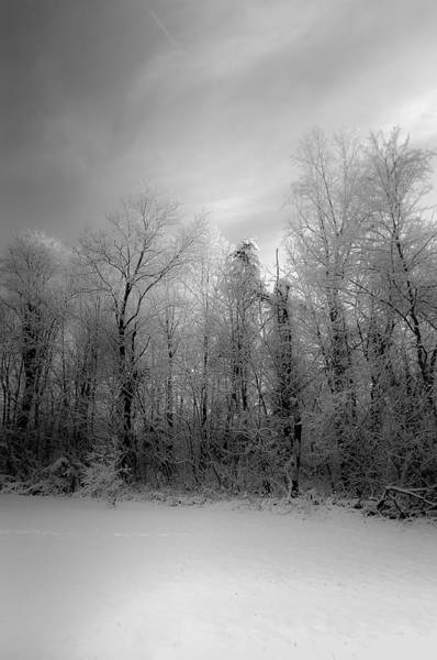 Unframed Wall Art - Photograph - Impressionist Snow by Lori Coleman