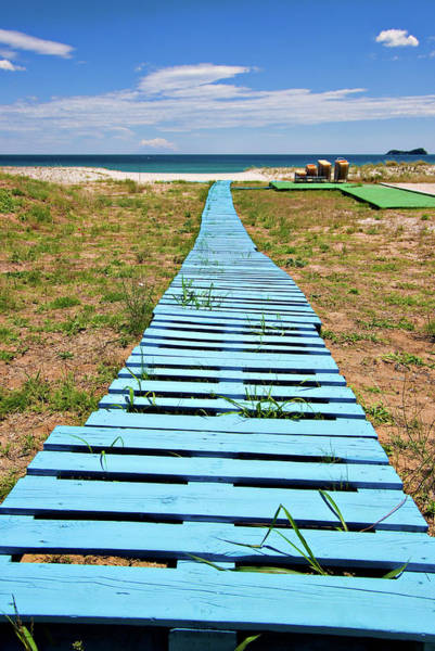 Pallet Wall Art - Photograph - Improvised Boardwalk by Meirion Matthias