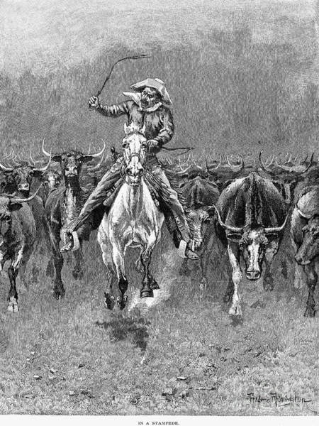 Remington Photograph - In A Stampede by Granger