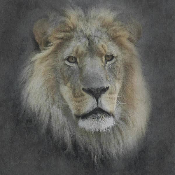 Mountain Lion Digital Art - In Memory Of Elson by Ernie Echols