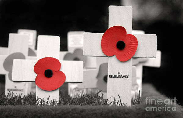 Honour Wall Art - Photograph - In Remembrance by Jane Rix