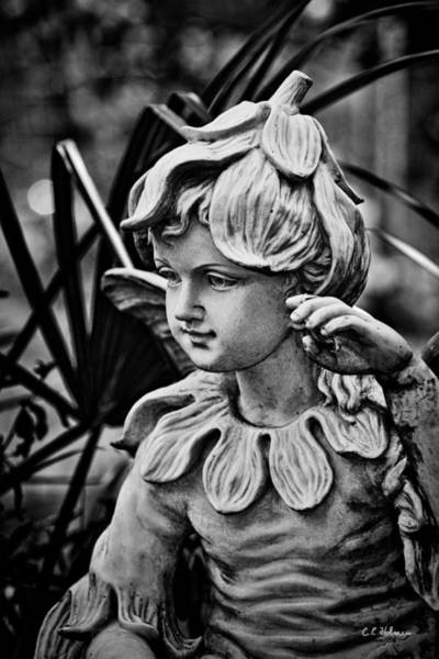 Photograph - In The Garden - Bw by Christopher Holmes