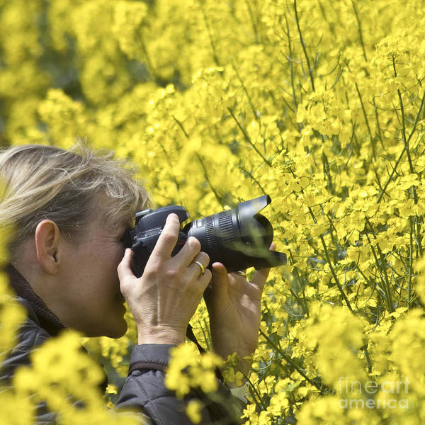 Photograph - In The Rape Field by Heiko Koehrer-Wagner