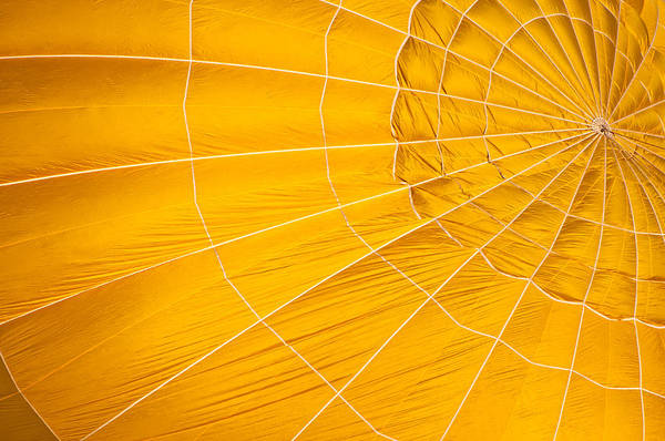 Photograph - Inflating Folds Of Yellow by Colleen Coccia
